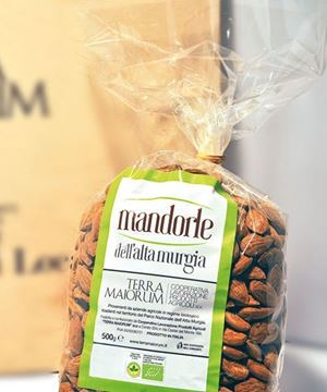 Picture of Almonds BIO • variety TUONO •  500 g